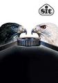 Koła i pasy - BLACKHAWK Pd™ (8M, 14M)